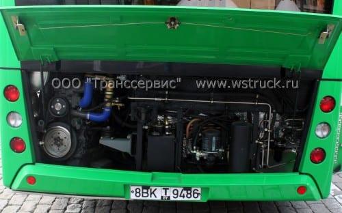 203l65 rear