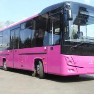 фото 8 Автобус маз 232162 пригородный